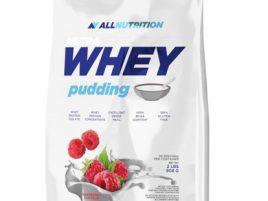 Whey Pudding